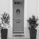 Door framed with green plants by bubblehex08