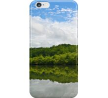 Reflection of Life iPhone Case/Skin
