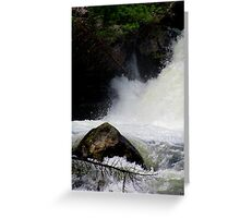 Gentle and Strong Greeting Card