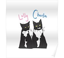 Charlie and Lolly (@charlieskittyadventures) Poster