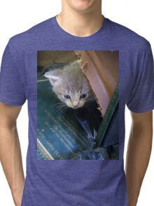 Peeking Kitten Tri-blend T-Shirt