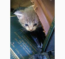 Peeking Kitten Unisex T-Shirt