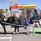 Horse and Buggy (1) by Shulie1