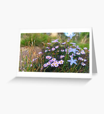 Wildflowers on a Rock Greeting Card