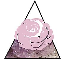 Rock and Rose Photographic Print