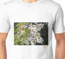 Leptospermum lanigerum Unisex T-Shirt