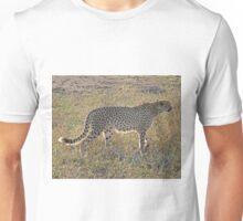 Cheetah, Kruger National Park, South Africa Unisex T-Shirt