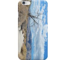 Anza-borrego desert  iPhone Case/Skin