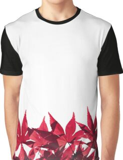 Red Maple Leaves - Oh Canada! Graphic T-Shirt