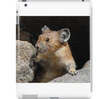 Pika Looking out from its Burrow iPad Case/Skin