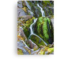 Mossy Waterfall at Snow Lake Canvas Print