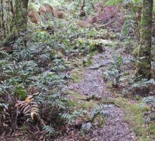 Julius River Forest Reserve Walk, Tasmania (3) Sticker