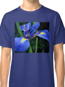 Blue flag beauty Classic T-Shirt