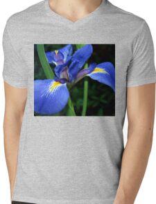 Blue flag beauty Mens V-Neck T-Shirt