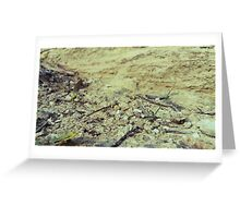 Textures of Earth Greeting Card