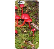 Rainforest Toadstools A iPhone Case/Skin