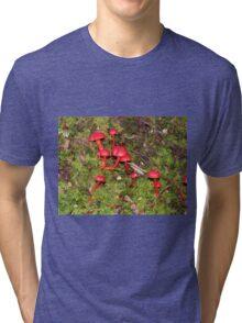 Rainforest Toadstools A Tri-blend T-Shirt