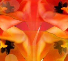 Tangerine Tulips Sticker