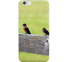 Two Birds Sitting  iPhone Case/Skin