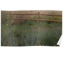Meadow Fence Poster