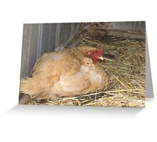 'IN THE ARMS OF LOVE!' Blondie & chick. Greeting Card
