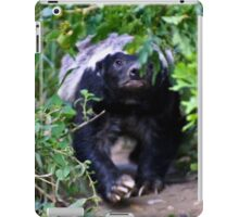 Coming through the undergrowth iPad Case/Skin