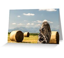 hay bale in the fields Greeting Card