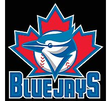 Toronto_Blue_Jays_Logo_ Photographic Print