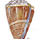 Beach house style 5 - Cone Shell by Maree Clarkson