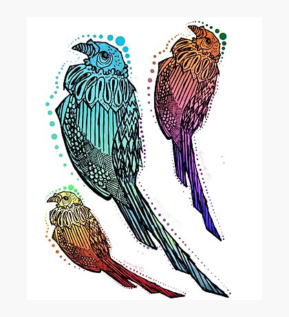 Psycho Pigeons Photographic Print