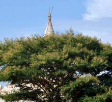 A temple tree in Bagan, Myanmar Sticker