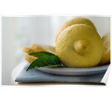 lemons with slices and green leaves isolated  Poster