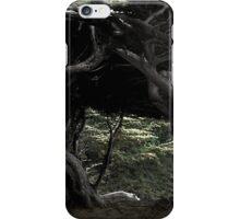 Cypress Freeway iPhone Case/Skin