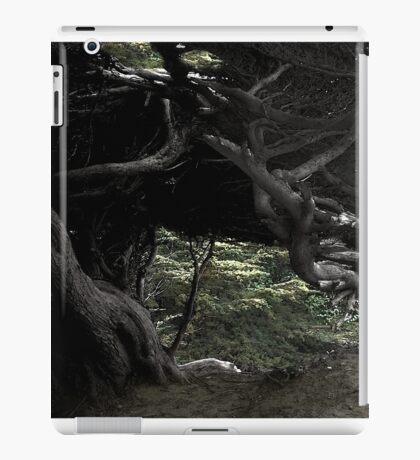 Cypress Freeway iPad Case/Skin