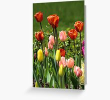 Tulips (portrait) Greeting Card