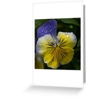 Cheerfully Wet  Greeting Card
