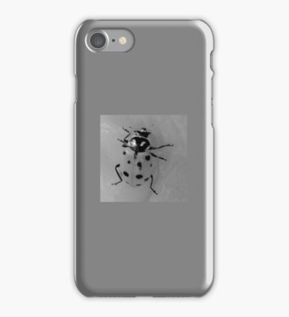 LADYBUG Lady Bug iPhone Case/Skin