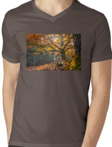 Autumnal oak Mens V-Neck T-Shirt