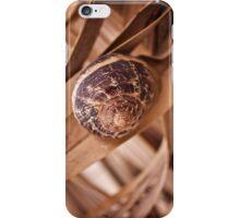 Snail iPhone Case/Skin