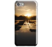 Meadow Flood Sunset iPhone Case/Skin