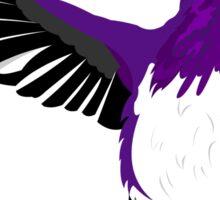 Ace Hummingbird  Sticker