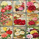 Old Fashioned Seed Packets by Vickie Emms