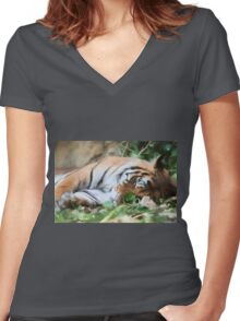 tiger at the zoo Women's Fitted V-Neck T-Shirt