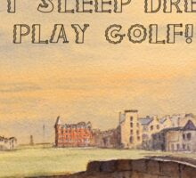 EAT SLEEP DREAM PLAY GOLF Sticker