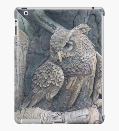 Disney Animal Kingdom Owl iPad Case/Skin