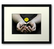 Just a touch of color Framed Print