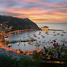 Catalina Island by jswolfphoto