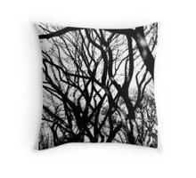 Autumn trees Central Park NYC Throw Pillow