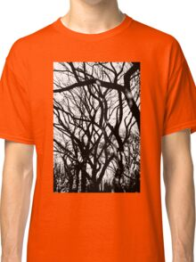 Autumn trees Central Park NYC Classic T-Shirt