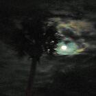 Palm Tree In Moonlight by swiftwolf
